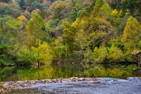 river;water;trees;current