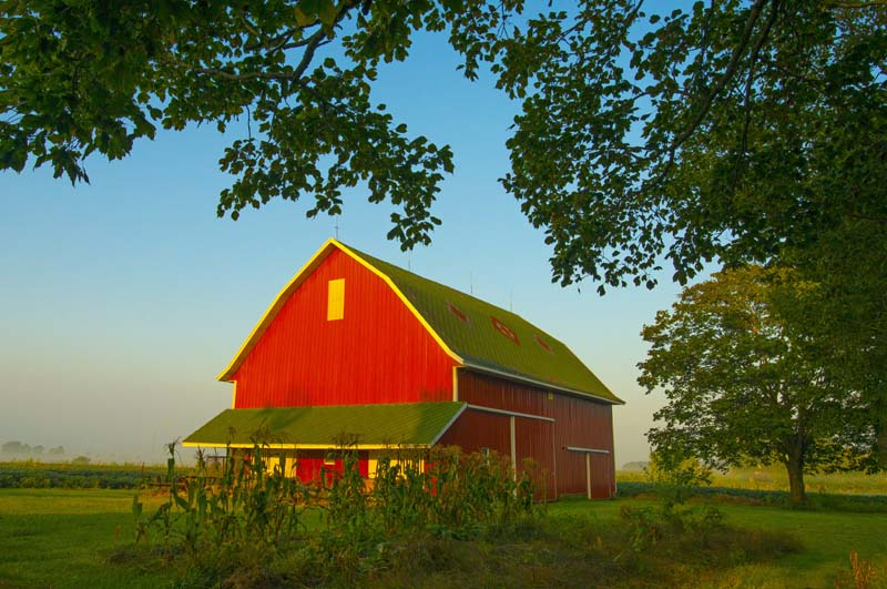 Barn;barns;farm;farms;red;Indidna;green;Midwest;rural;Wabash County