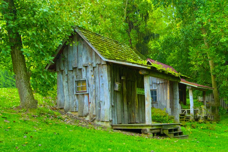 Cabin;Carrol County;Indiana;gray;weathered wood;green;Old;antique
