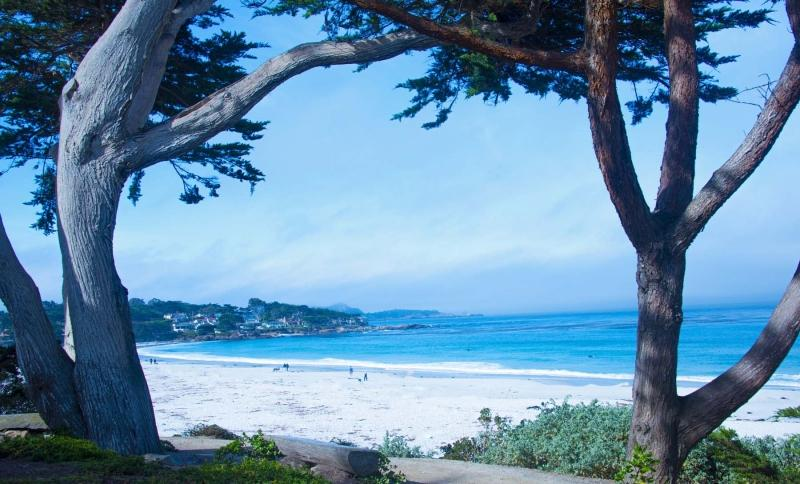 Pacific;Ocean;Sea;natucal;California;Calf;blue;green;beach;Carmel;costal;West Coast;Vista;Senic