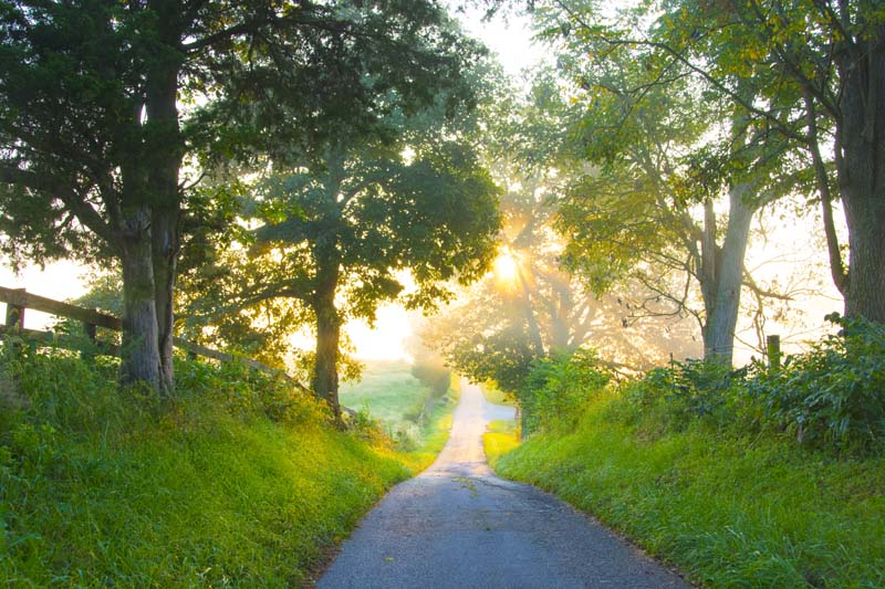 Road;Roads;Country Road;green;Sunrise;rural;Kentucky;Ky;Richmond;Midwest