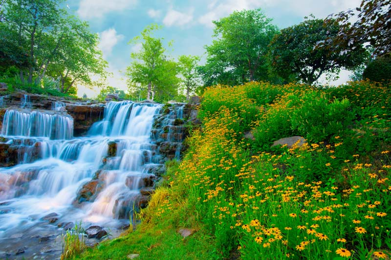 Waterfall;Nature;stream;creek;moving water;senic;Hamilton County;Indiana;Midwest;flowers;yellow;green