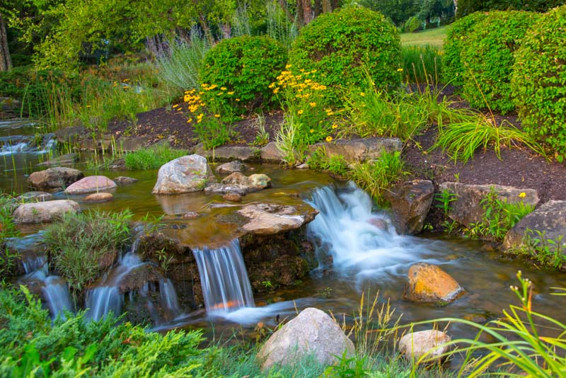 Waterfall;flowers;yellow;green;Hamilton County;Indiana;Midwest;Reeds;stream;movimg water;nature