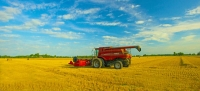 Farm;Farming;Hay;Bales;Farm-Equipment;Fulton-County;Midwest;Indiana;Gold;Brown;blue;Red