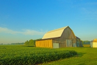 Barn;Barns;Farm;Farming;Farms;Fog;green;gray;midwest;Indiana;Miami-County;rural;weathered-wood