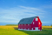 Barn;farm;red;green;blue;golden;Indiana;Midwest;Carroll-County;rural