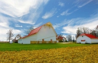 Barn;barns;farm;red;white;green;Indiana;Midwest;Tipton-County;rural;corn-field;rural