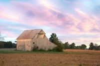 Barn;barns;farm;weathered-wood;gray;Indiana;Midwest;Tipton-County;rural;sunrise