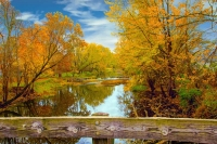 Indiana;Midwest;rural;Fall-Colors;Fall-leaf-color;orange;fence;white;beauty;peaceful;Green;Miami-Cou