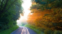 Raod;country;rural;Indiana;sunrise;fog