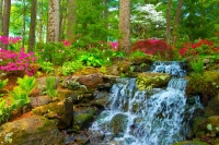 Floweres;spring-flowers;pink;green;waterfall;Azalela-Walk;Gibson-County;nature;Indiana;Midwest