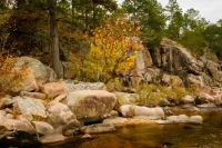 Castor-river-shut-ins;rocks;water-flow;rapids;nature;landscape;horizontal;trees;leaves;fall;foliage;