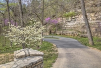 dogwood-canyon;mo;missouri-nature;spring;lampe;walking-path