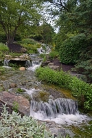 Waterfall;stream;moving-water;nature;creek;brook;Hamilton-County;Indiana;Midwest;green