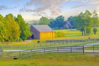 Barn;farm;horse-farm;animala;Green;gray;Kentucky;Midwest;Lexington