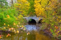 Bridge;stream;Indiana;Midwest;rural;fall-colors;fall-leaf-colors;water;spring;orange;green;arch